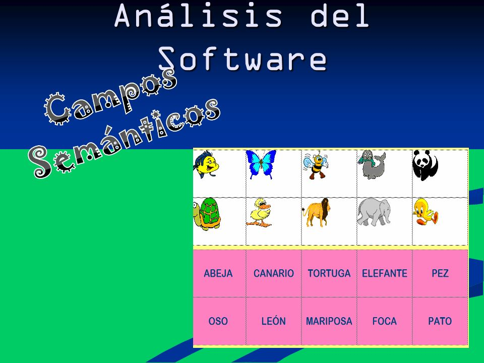 Análisis del Software