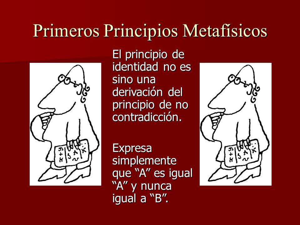 Primeros Principios Metafísicos