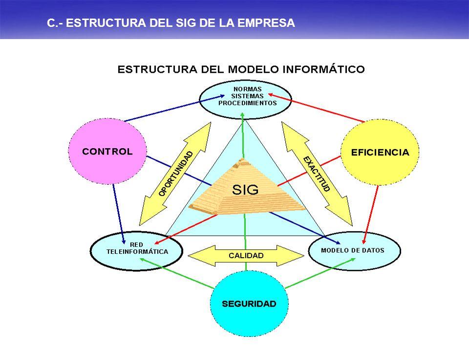C.- ESTRUCTURA DEL SIG DE LA EMPRESA
