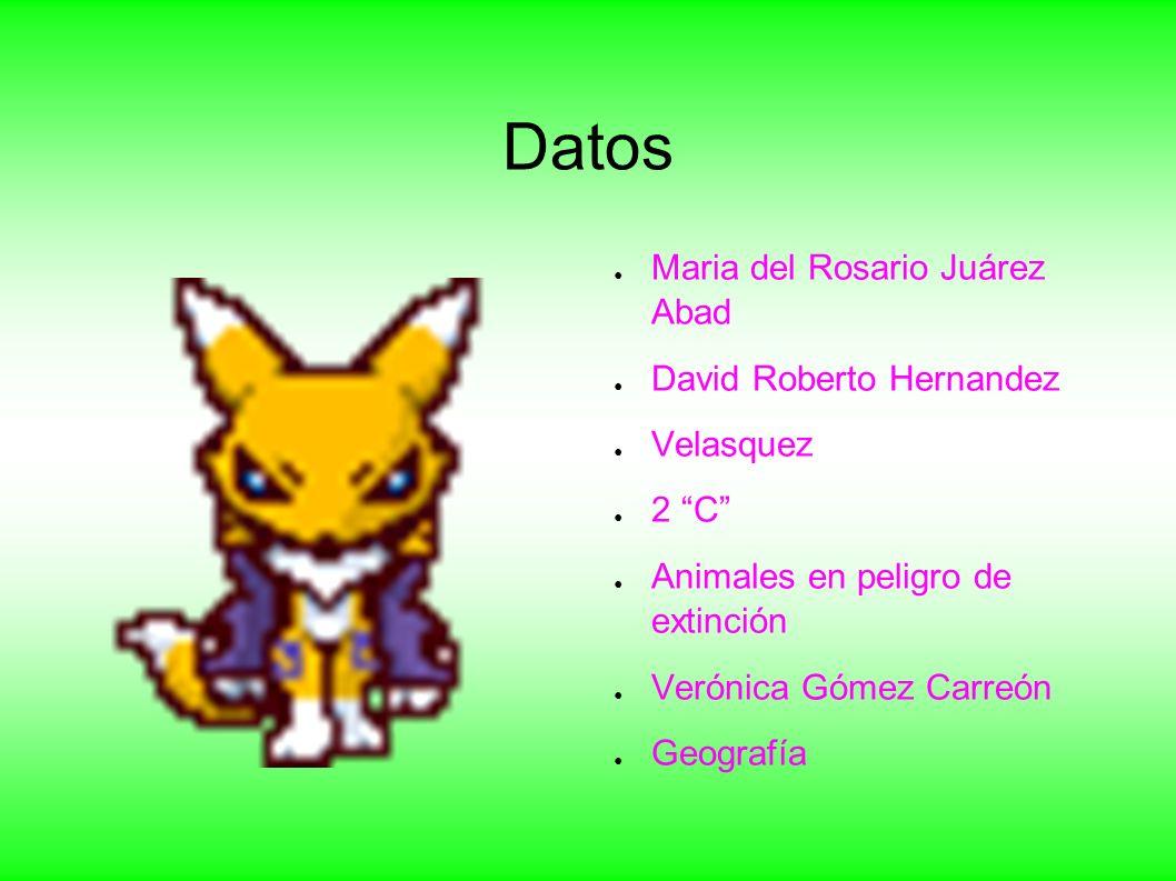 Datos Maria del Rosario Juárez Abad David Roberto Hernandez Velasquez
