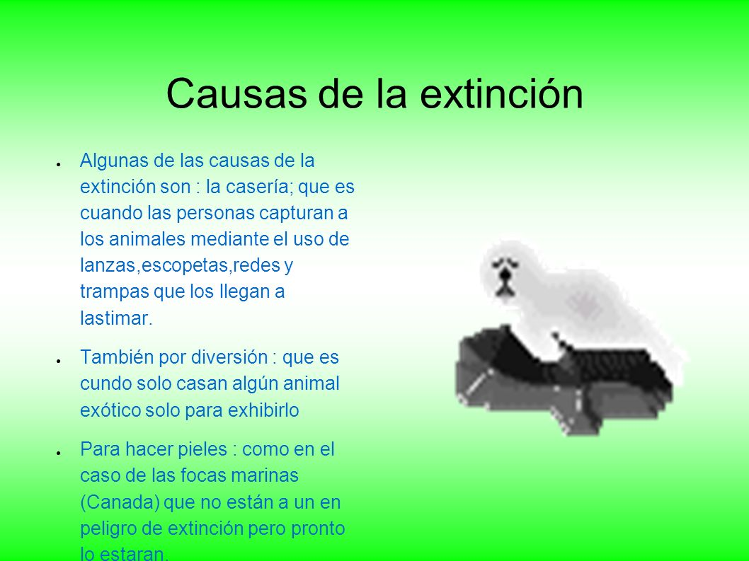 Causas de la extinción