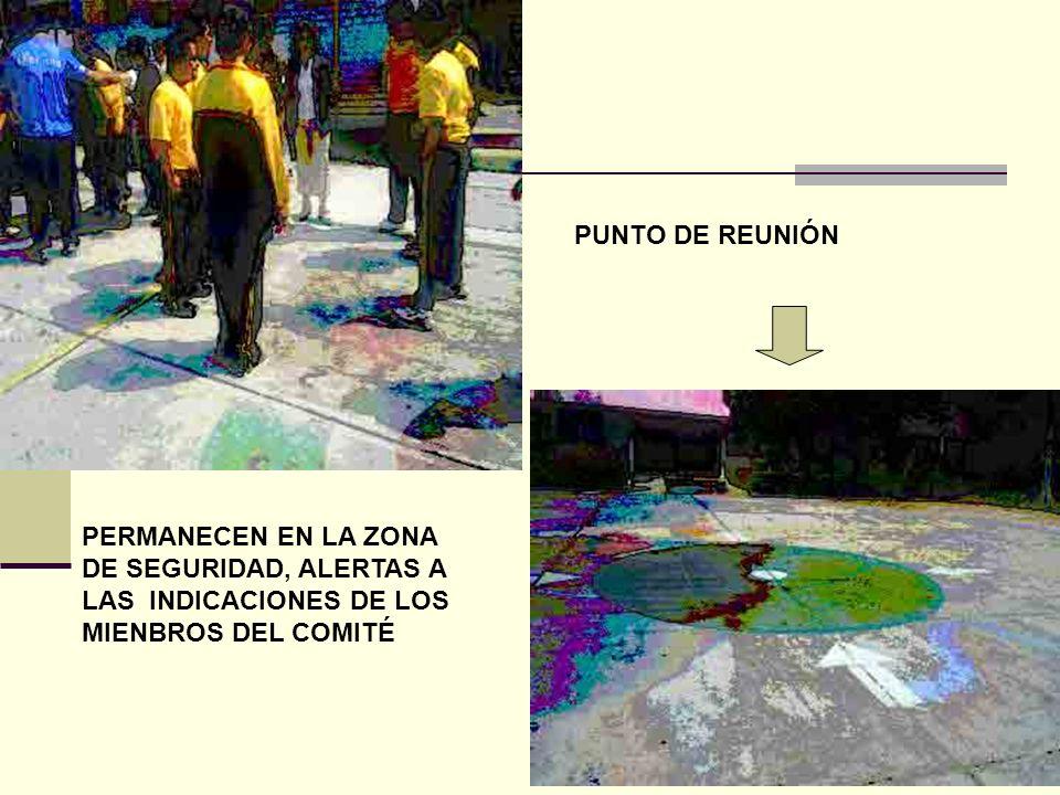PUNTO DE REUNIÓN PERMANECEN EN LA ZONA DE SEGURIDAD, ALERTAS A LAS INDICACIONES DE LOS MIENBROS DEL COMITÉ.