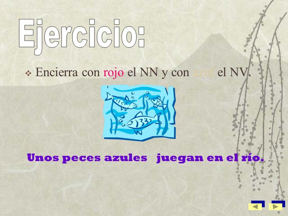 Ejercicio: Encierra con rojo el NN y con azul el NV.