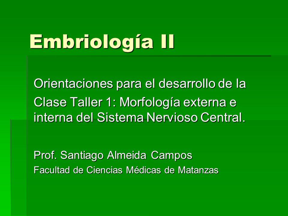 Embriología II Orientaciones para el desarrollo de la