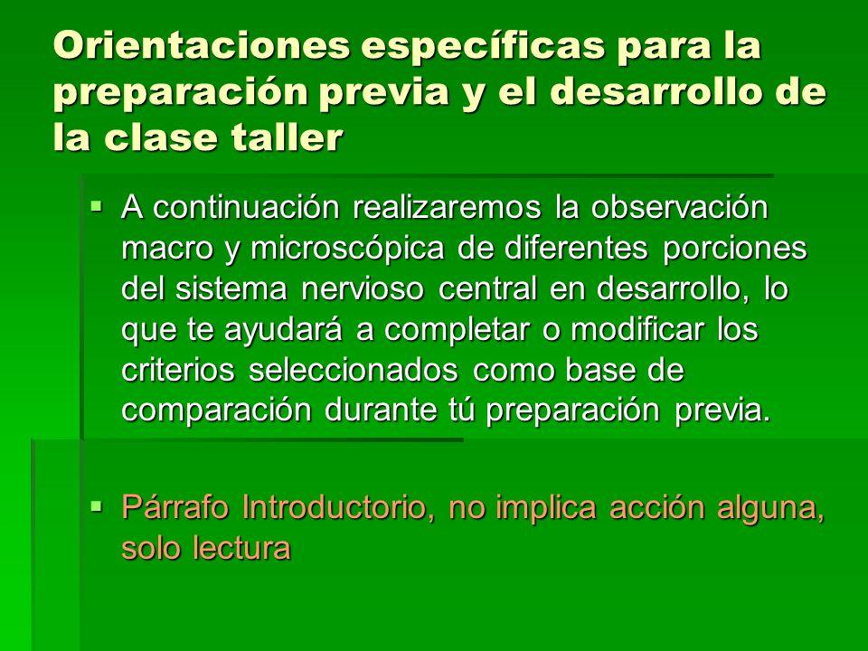 Orientaciones específicas para la preparación previa y el desarrollo de la clase taller