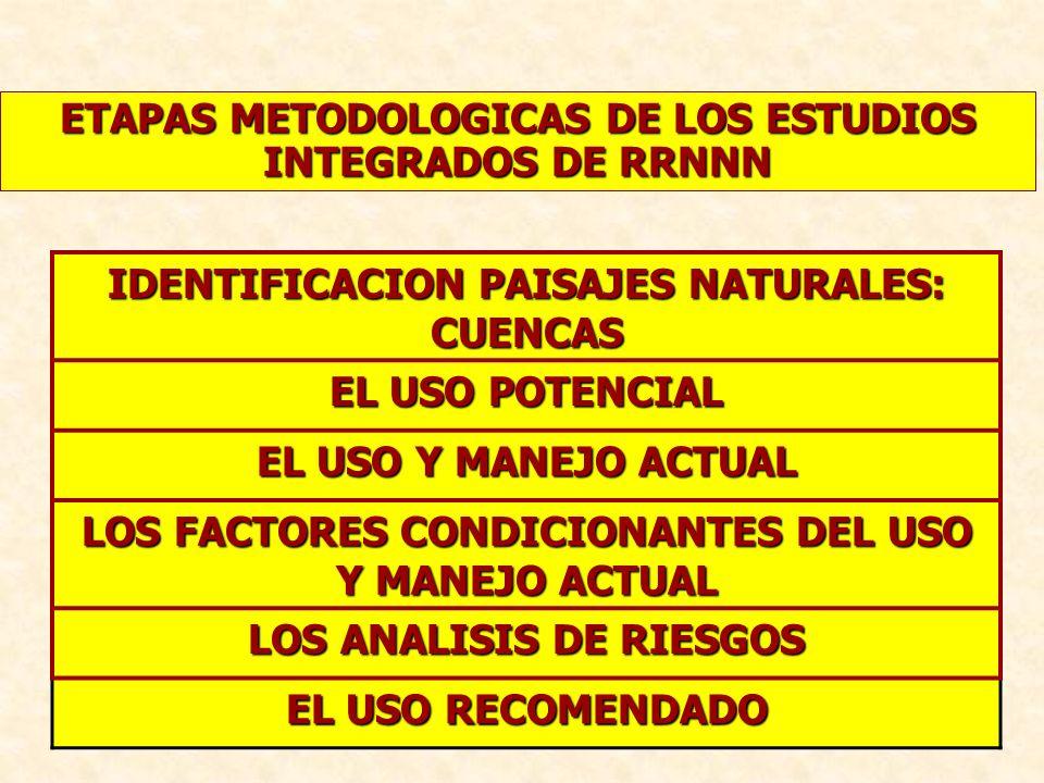 ETAPAS METODOLOGICAS DE LOS ESTUDIOS INTEGRADOS DE RRNNN