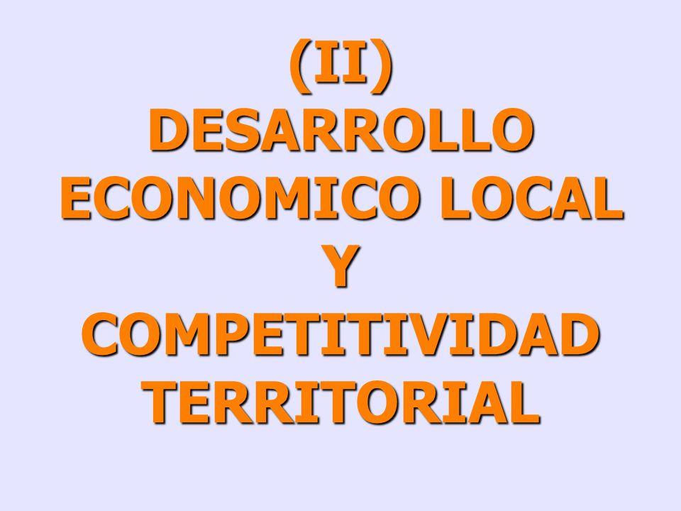 DESARROLLO ECONOMICO LOCAL COMPETITIVIDAD TERRITORIAL