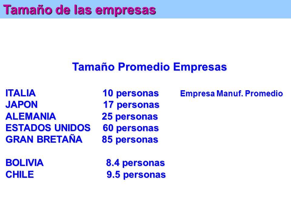 Tamaño de las empresas ITALIA 10 personas Empresa Manuf. Promedio