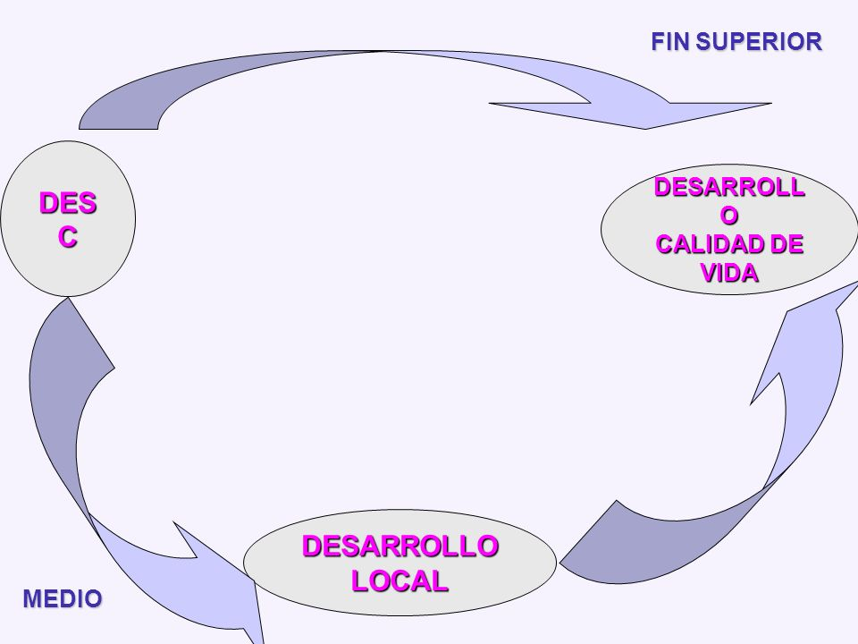 DESC DESARROLLO CALIDAD DE VIDA FIN SUPERIOR DESARROLLO LOCAL MEDIO