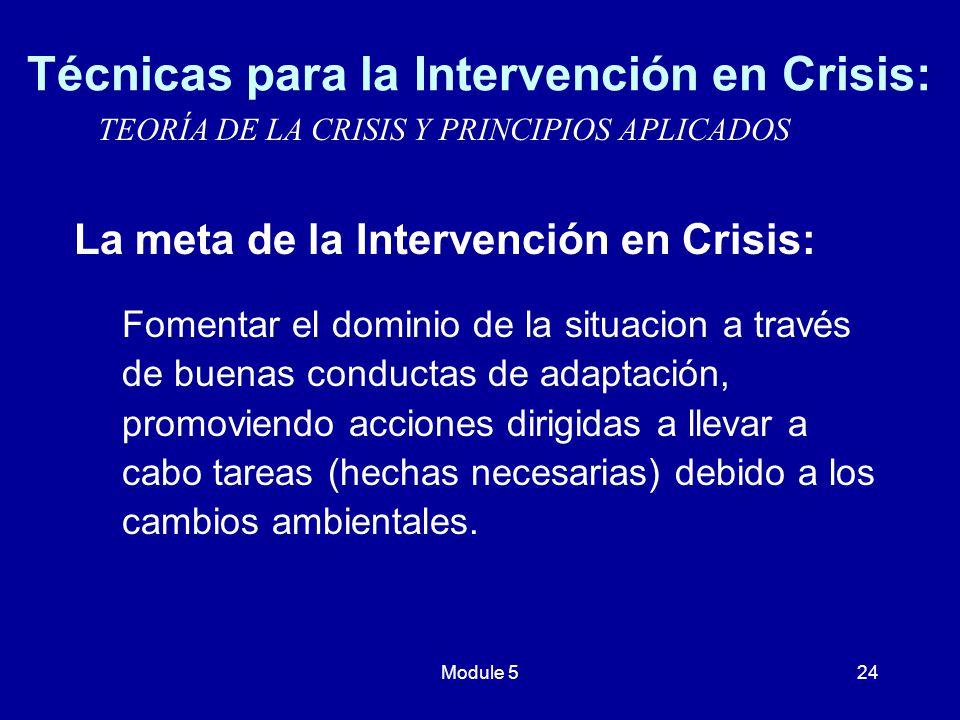 Técnicas para la Intervención en Crisis: