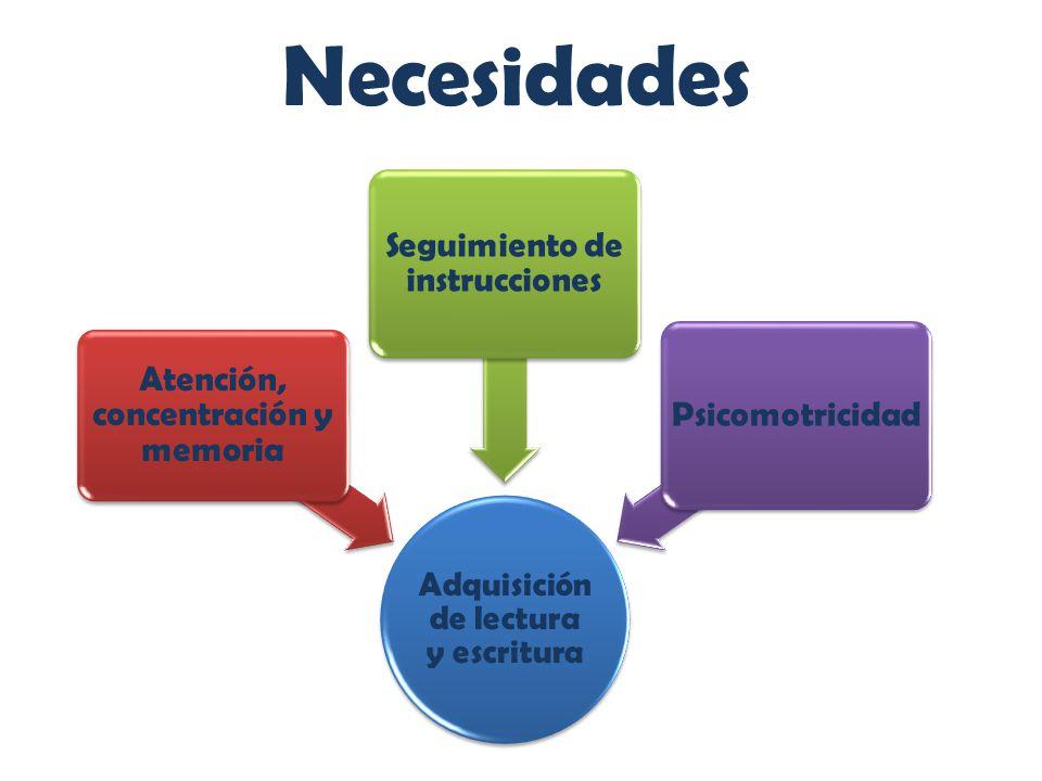 Necesidades Atención, concentración y memoria
