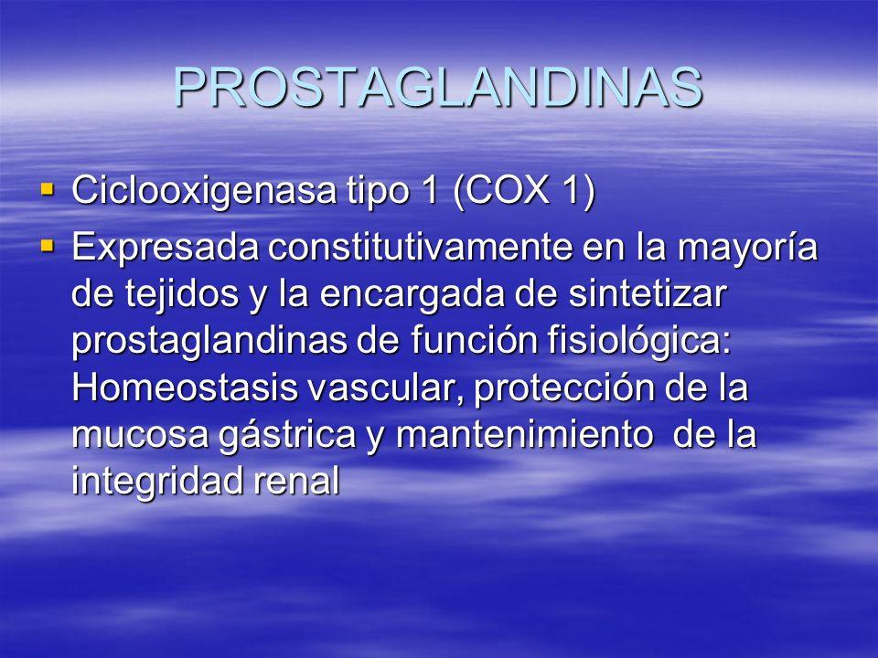 PROSTAGLANDINAS Ciclooxigenasa tipo 1 (COX 1)