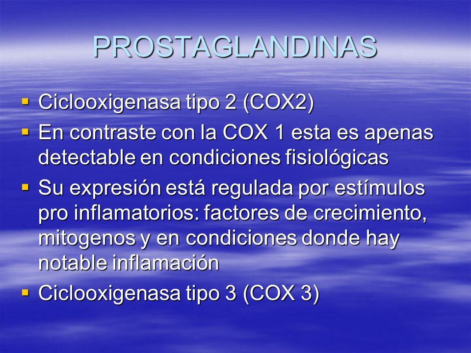 PROSTAGLANDINAS Ciclooxigenasa tipo 2 (COX2)