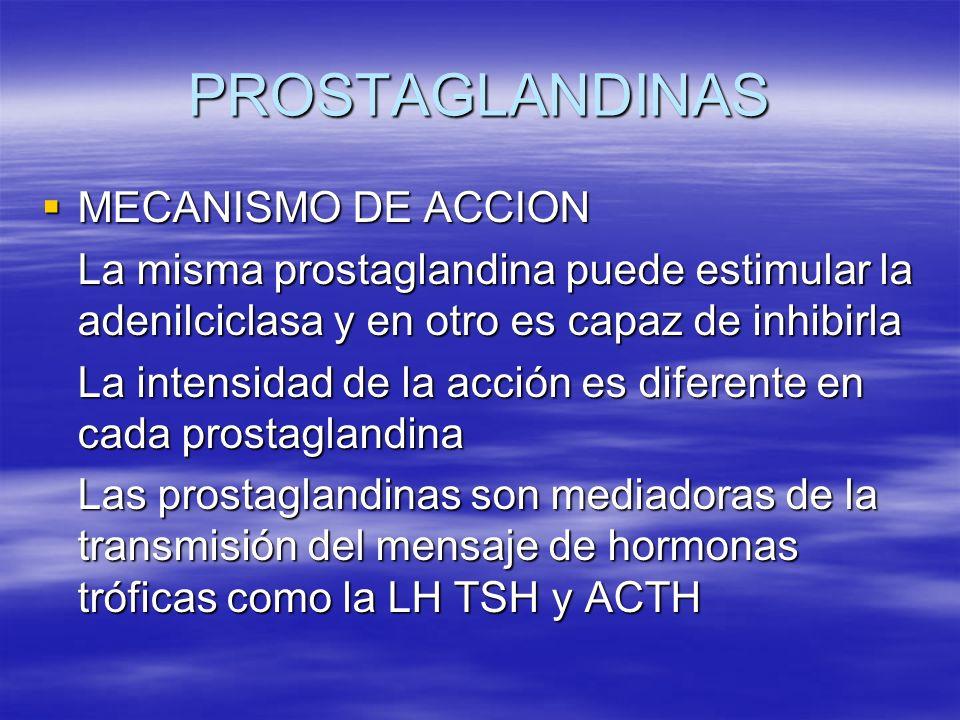 PROSTAGLANDINAS MECANISMO DE ACCION