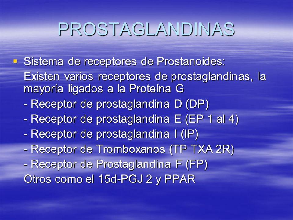 PROSTAGLANDINAS Sistema de receptores de Prostanoides: