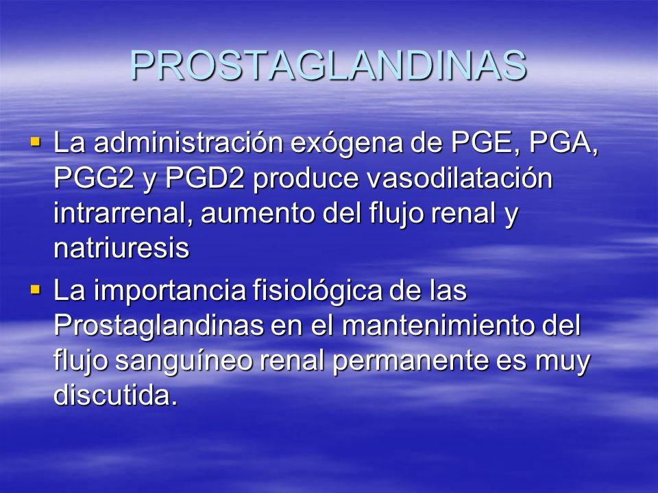 PROSTAGLANDINAS La administración exógena de PGE, PGA, PGG2 y PGD2 produce vasodilatación intrarrenal, aumento del flujo renal y natriuresis.