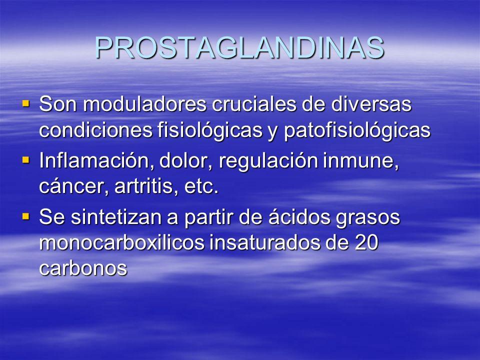 PROSTAGLANDINAS Son moduladores cruciales de diversas condiciones fisiológicas y patofisiológicas.