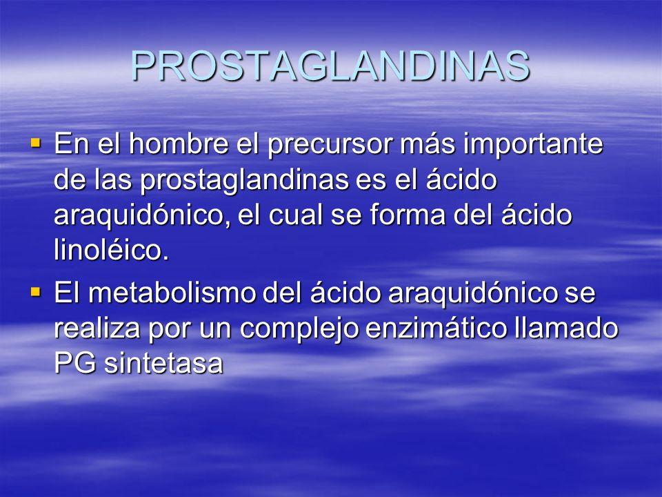 PROSTAGLANDINAS En el hombre el precursor más importante de las prostaglandinas es el ácido araquidónico, el cual se forma del ácido linoléico.
