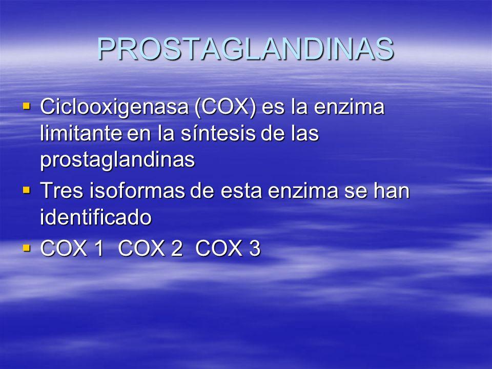 PROSTAGLANDINAS Ciclooxigenasa (COX) es la enzima limitante en la síntesis de las prostaglandinas. Tres isoformas de esta enzima se han identificado.