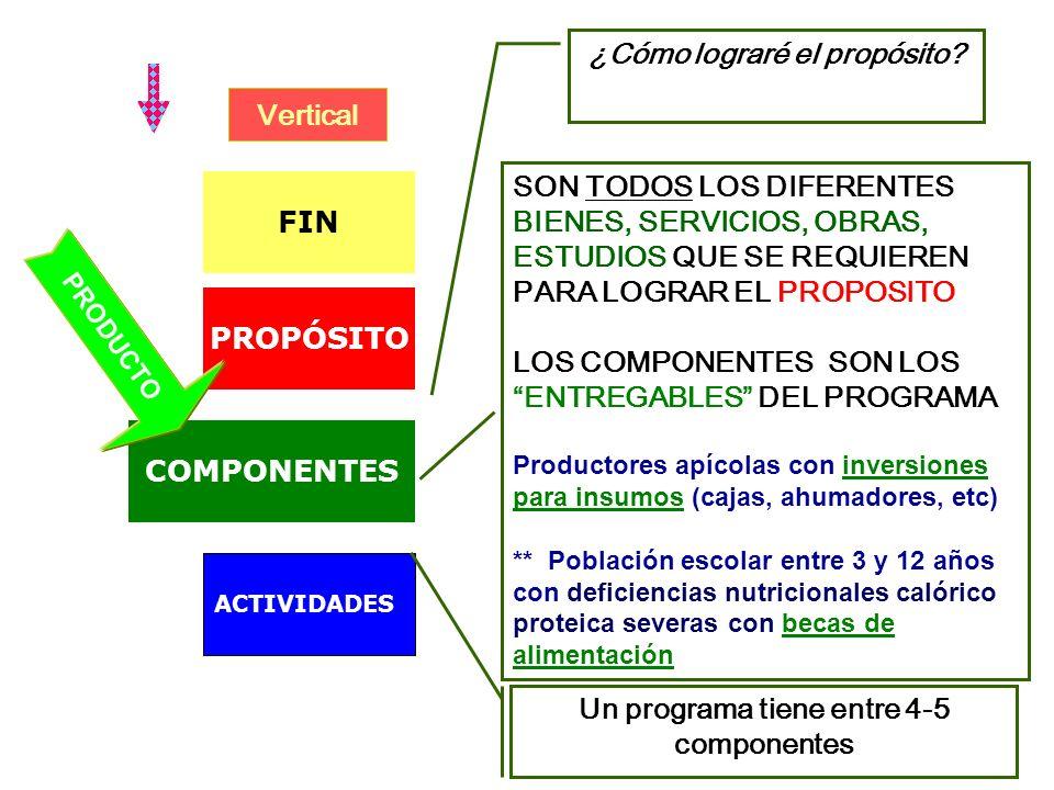 ¿Cómo lograré el propósito Un programa tiene entre 4-5 componentes