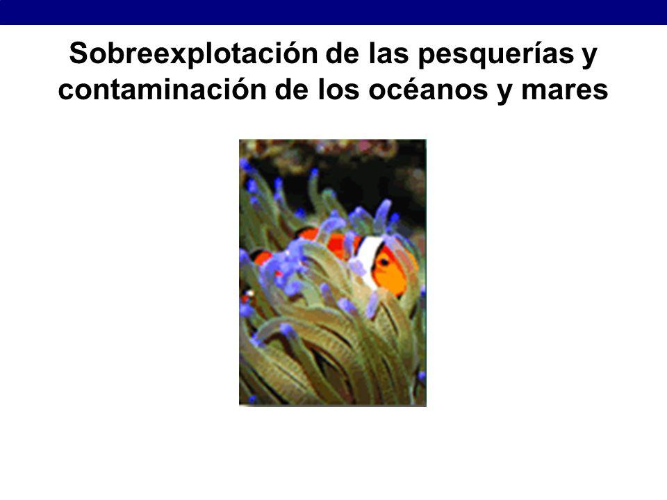 Sobreexplotación de las pesquerías y contaminación de los océanos y mares
