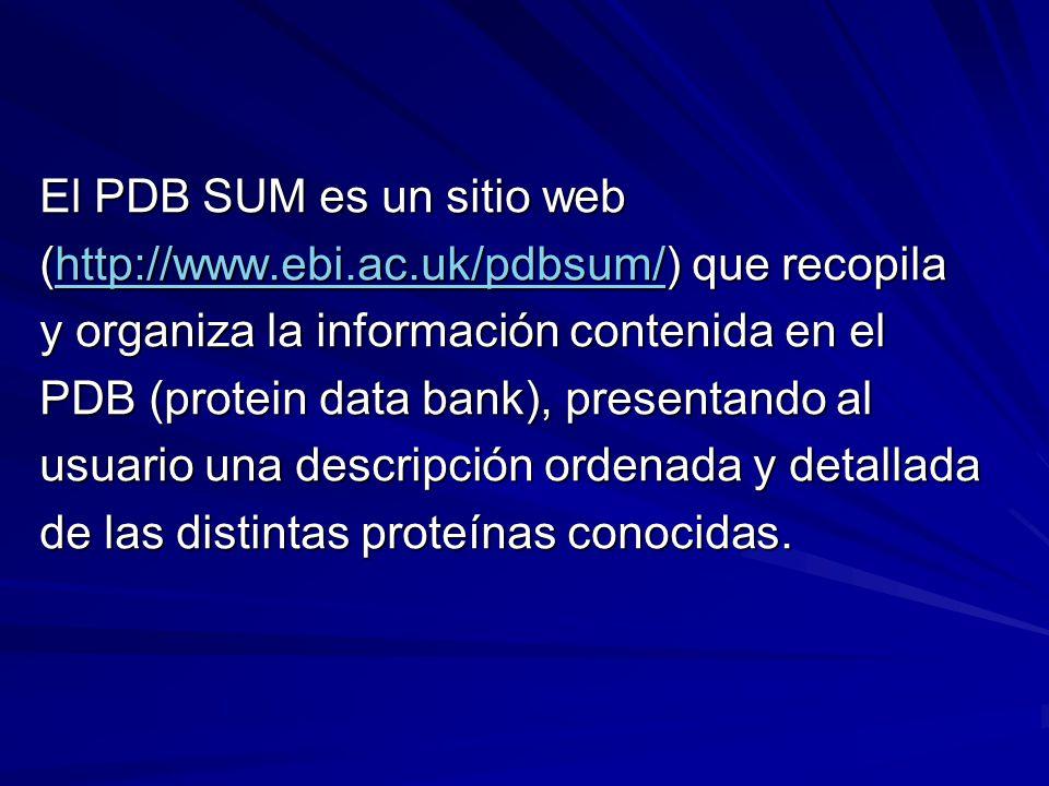 El PDB SUM es un sitio web