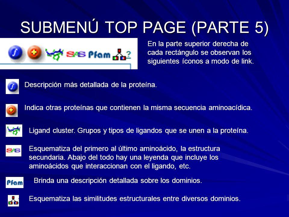 SUBMENÚ TOP PAGE (PARTE 5)