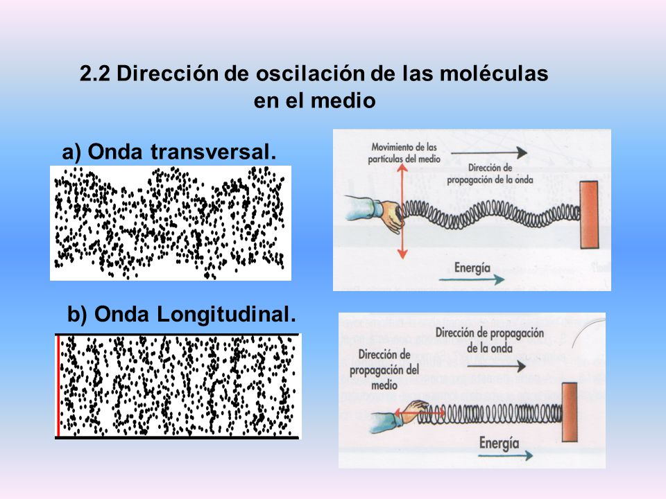 2.2 Dirección de oscilación de las moléculas en el medio