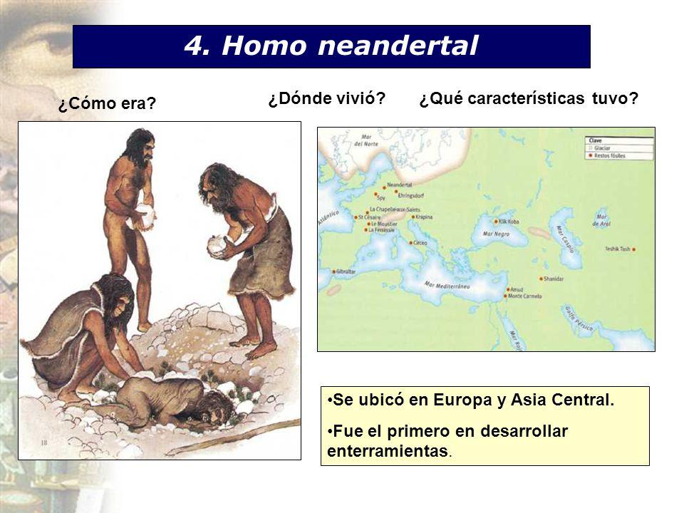 4. Homo neandertal ¿Dónde vivió ¿Qué características tuvo ¿Cómo era