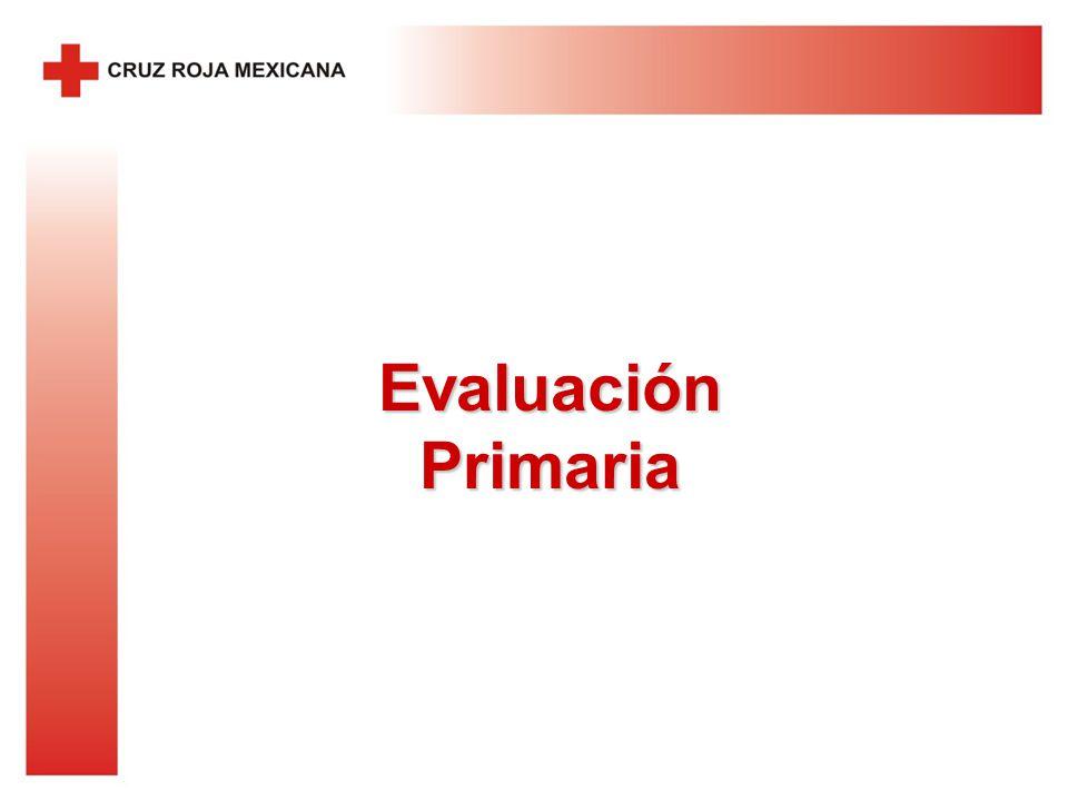 Evaluación Primaria