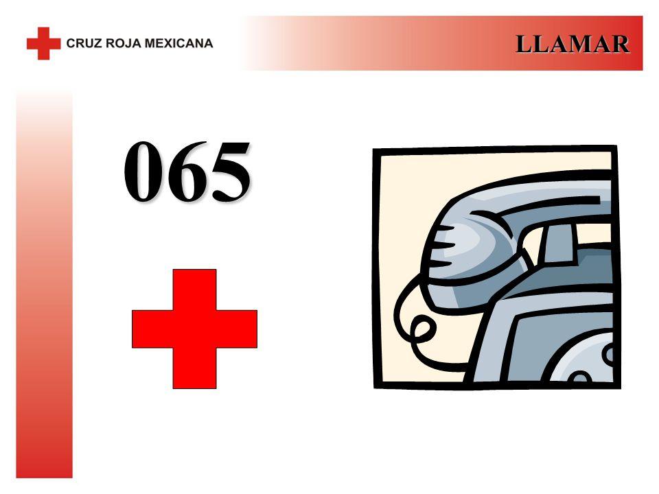 LLAMAR 065