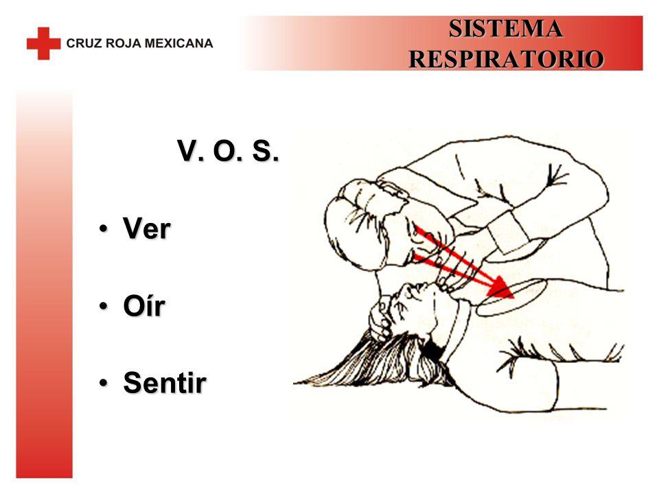 SISTEMA RESPIRATORIO V. O. S. Ver Oír Sentir