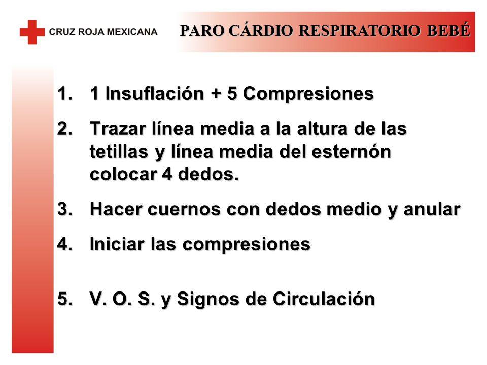 1 Insuflación + 5 Compresiones