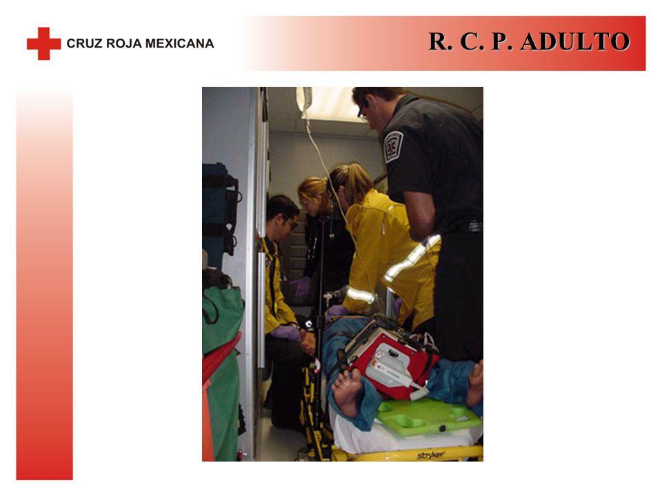 R. C. P. ADULTO