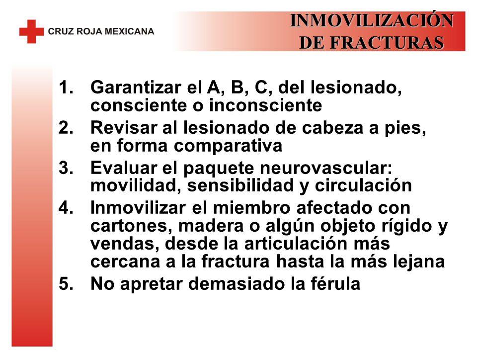 INMOVILIZACIÓN DE FRACTURAS