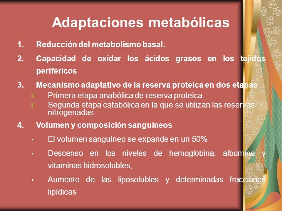 Adaptaciones metabólicas