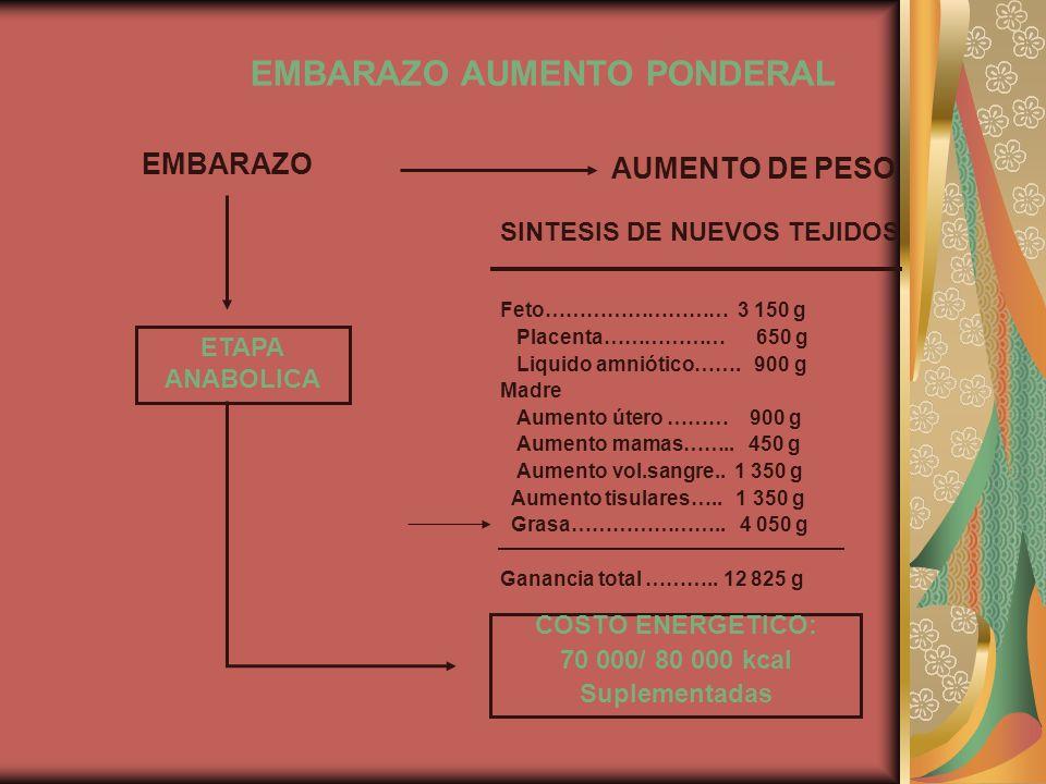 EMBARAZO AUMENTO PONDERAL