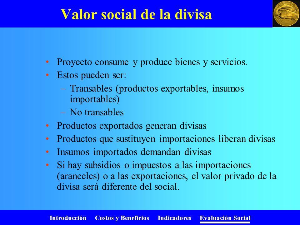 Valor social de la divisa