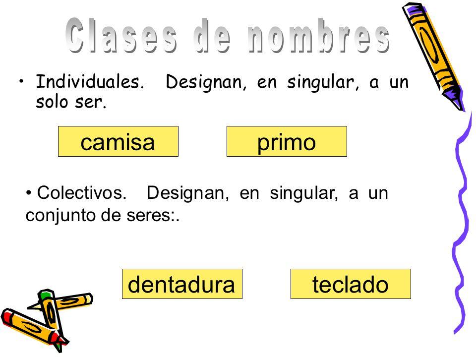 Clases de nombres camisa primo dentadura teclado