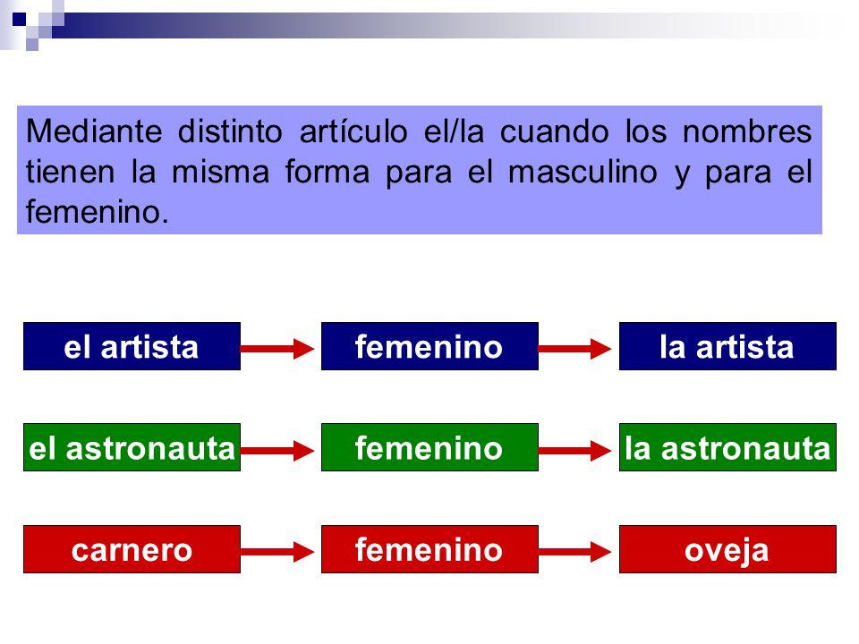 Mediante distinto artículo el/la cuando los nombres tienen la misma forma para el masculino y para el femenino.