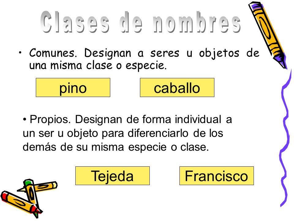 Clases de nombres pino caballo Tejeda Francisco