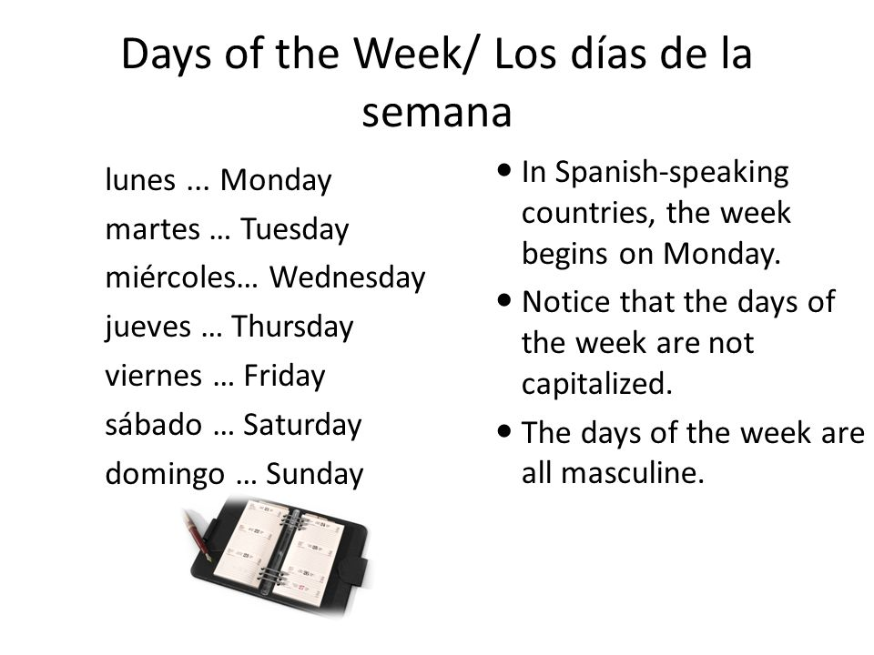 Days of the Week/ Los días de la semana
