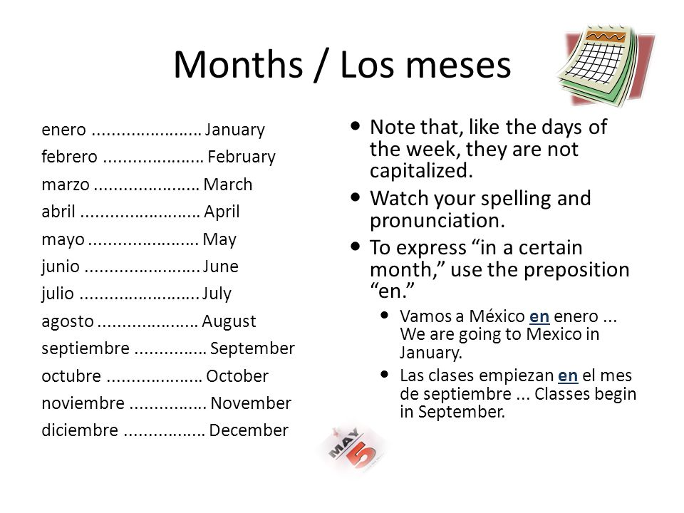 Months / Los meses