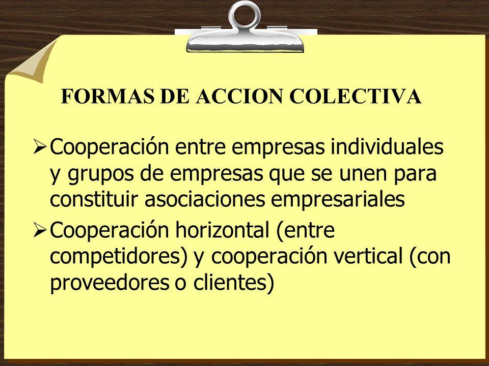 FORMAS DE ACCION COLECTIVA