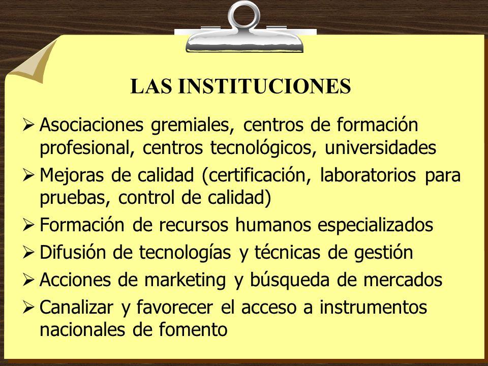 LAS INSTITUCIONES Asociaciones gremiales, centros de formación profesional, centros tecnológicos, universidades.