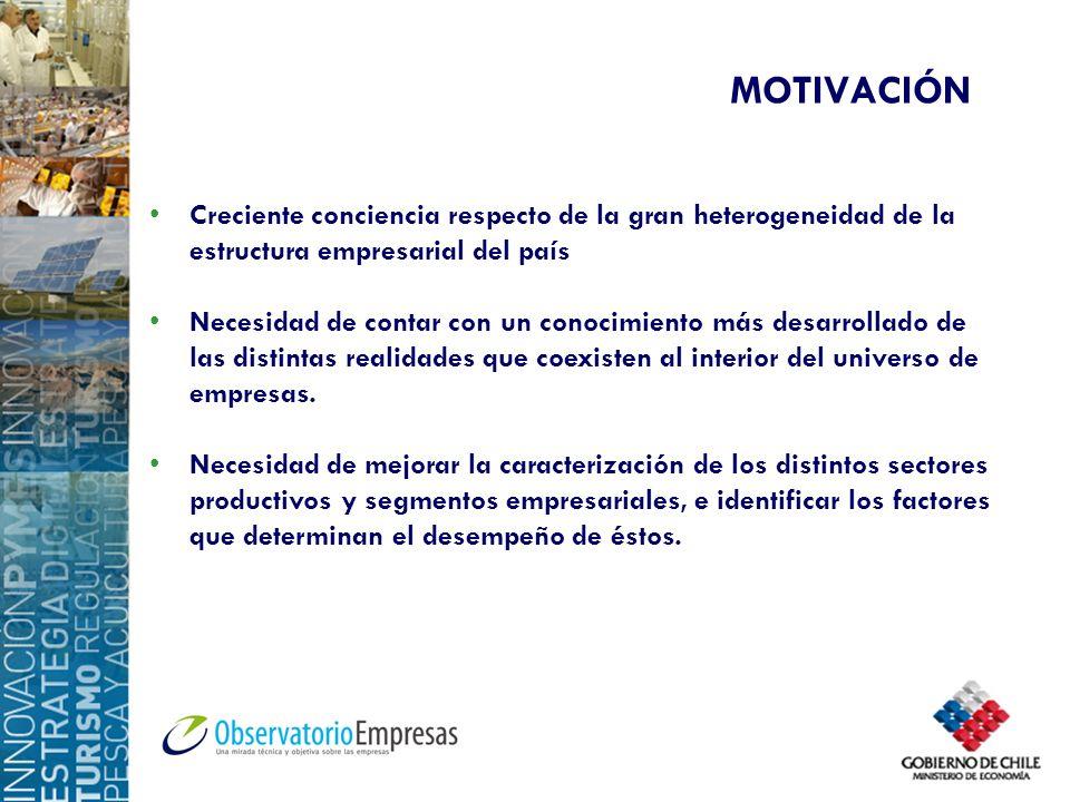 MOTIVACIÓN Creciente conciencia respecto de la gran heterogeneidad de la estructura empresarial del país.