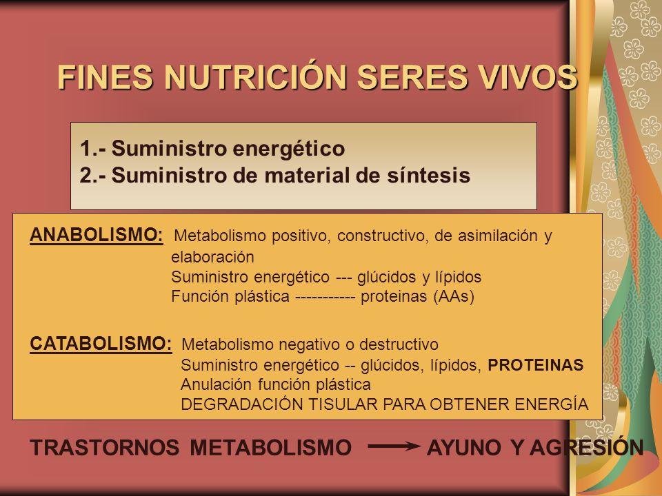 FINES NUTRICIÓN SERES VIVOS
