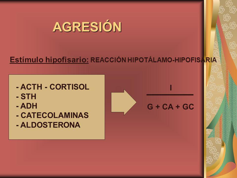 AGRESIÓN Estímulo hipofisario: REACCIÓN HIPOTÁLAMO-HIPOFISARIA