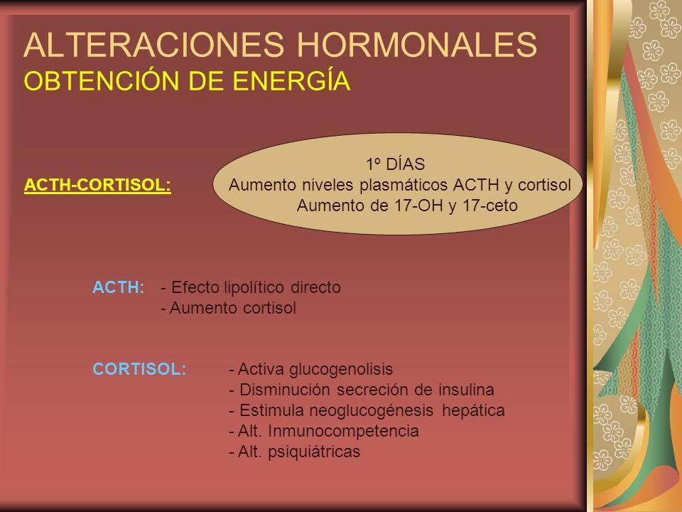 ALTERACIONES HORMONALES OBTENCIÓN DE ENERGÍA
