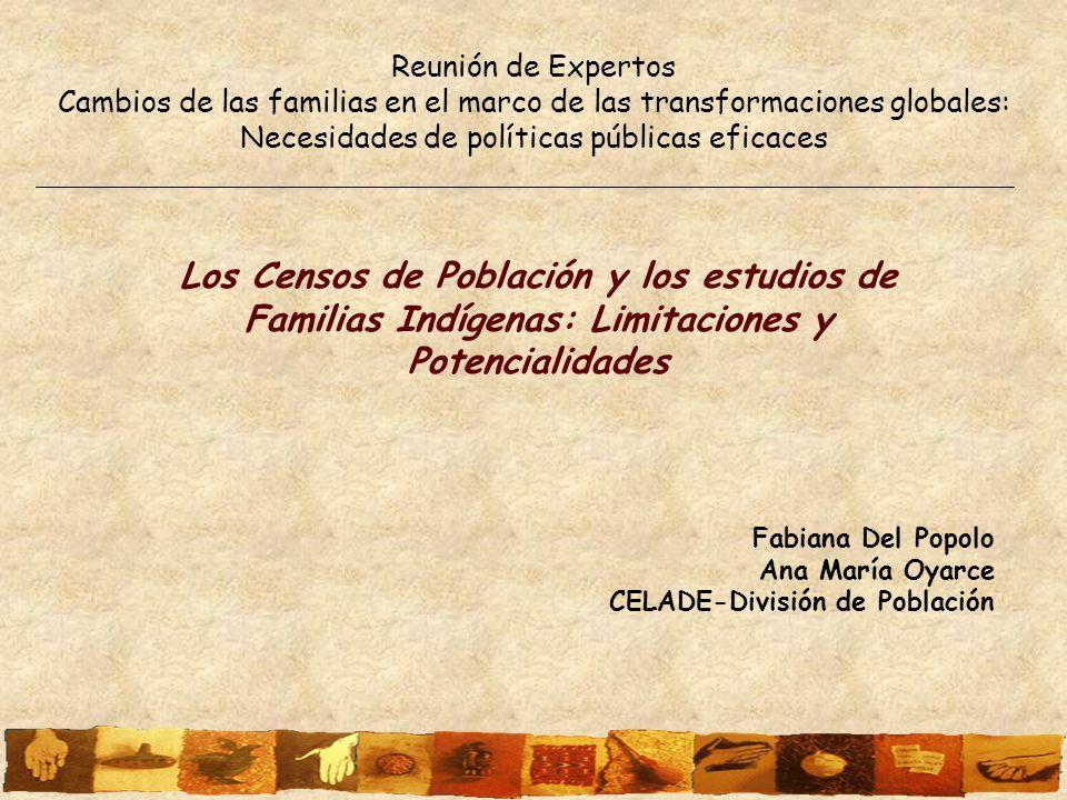 Reunión de Expertos Cambios de las familias en el marco de las transformaciones globales: Necesidades de políticas públicas eficaces